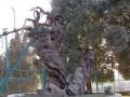 Мамврийский дуб, священное древо Авраама